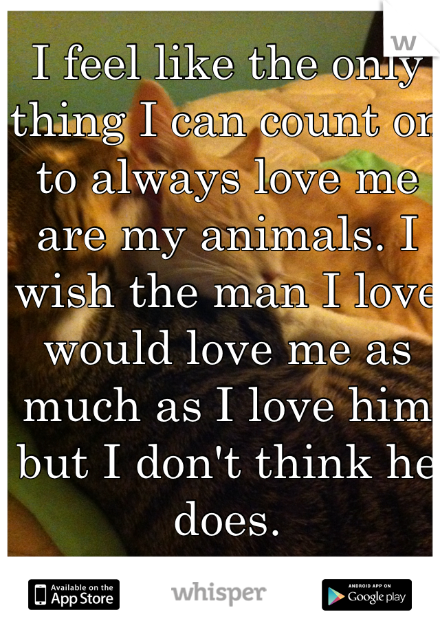 I feel like the only thing I can count on to always love me are my animals. I wish the man I love would love me as much as I love him but I don't think he does.