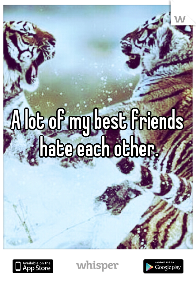 A lot of my best friends hate each other.