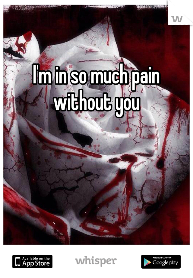 I'm in so much pain without you