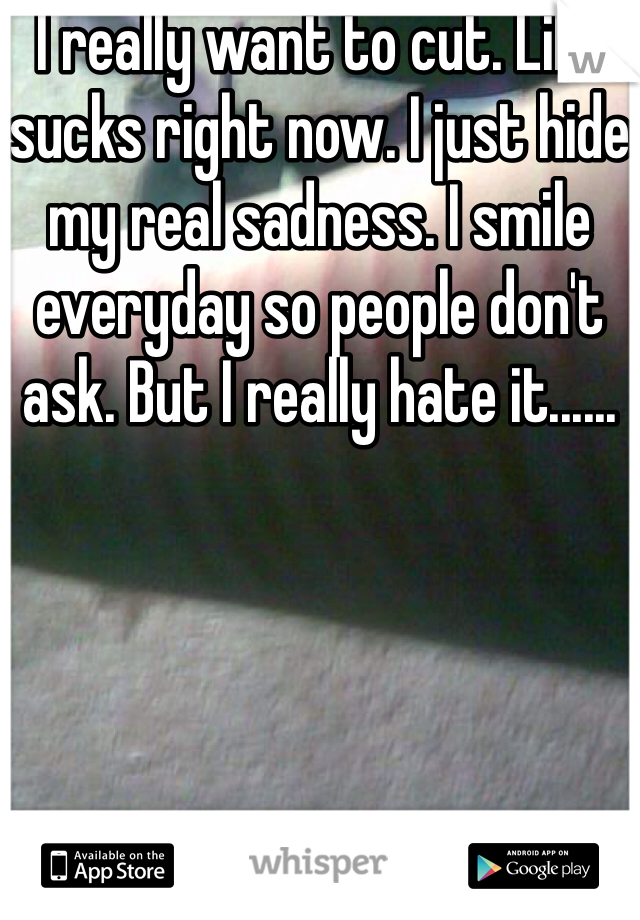 I really want to cut. Life sucks right now. I just hide my real sadness. I smile everyday so people don't ask. But I really hate it......