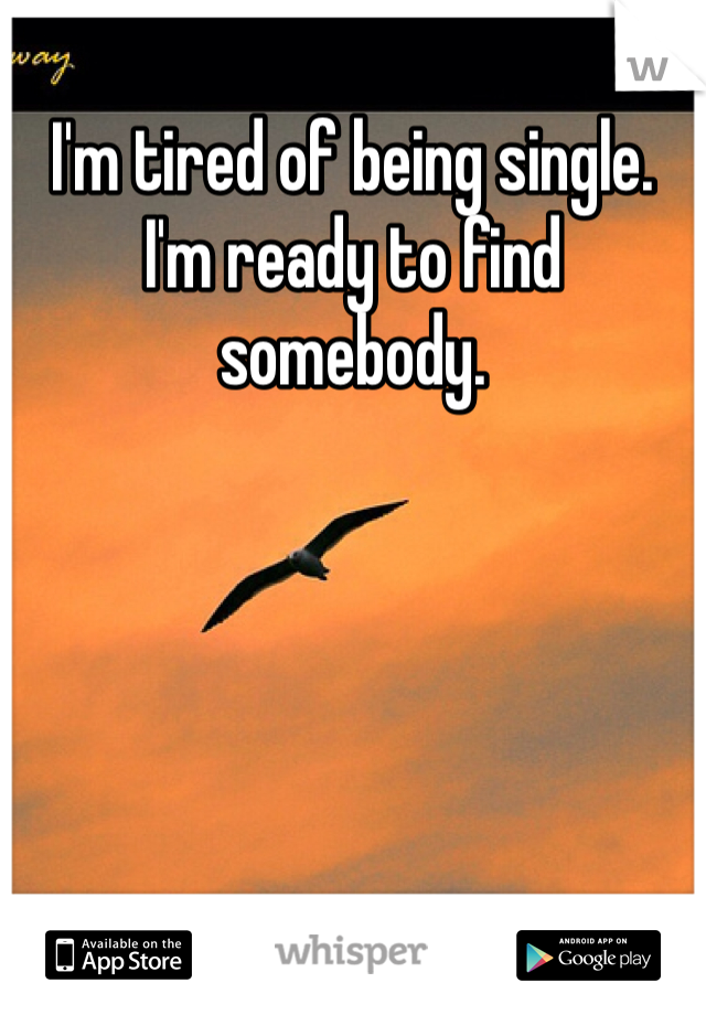 I'm tired of being single. I'm ready to find somebody.