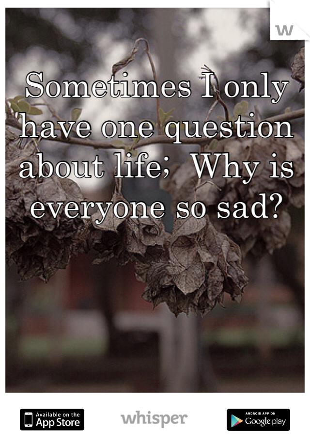 Sometimes I only have one question about life;  Why is everyone so sad?