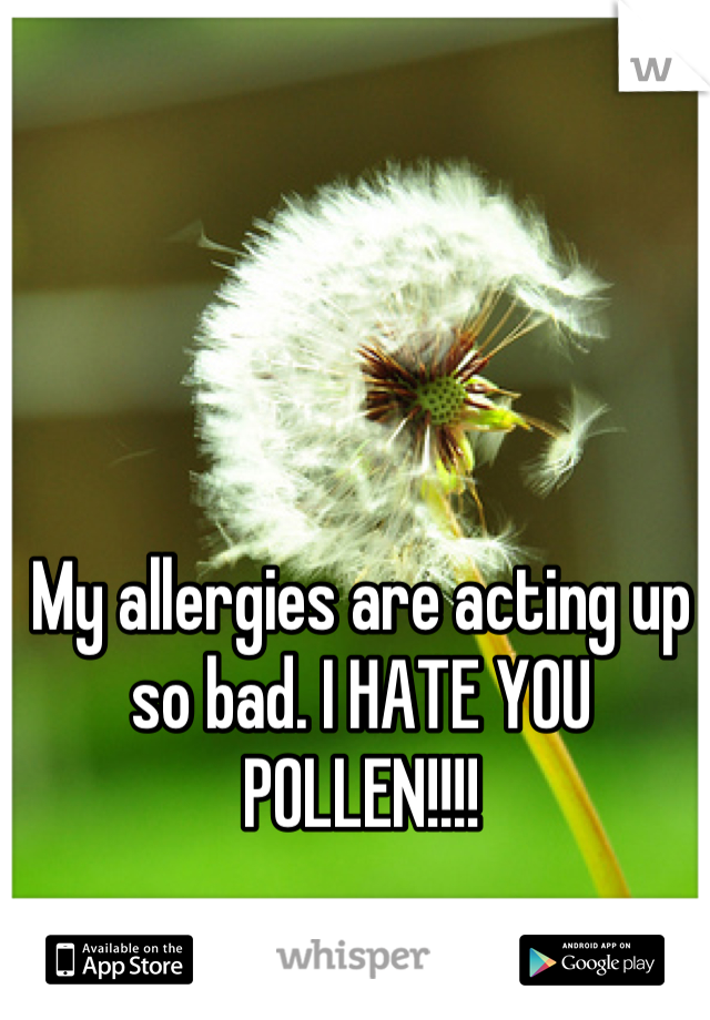 My allergies are acting up so bad. I HATE YOU POLLEN!!!!