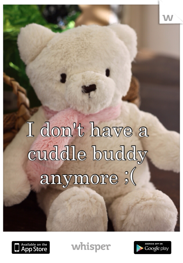 I don't have a cuddle buddy anymore ;(