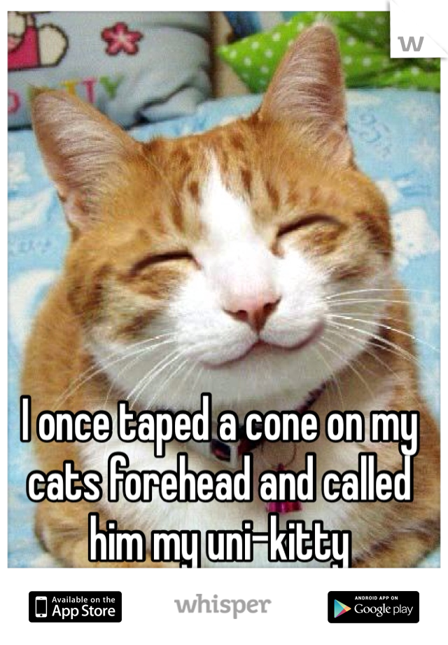 I once taped a cone on my cats forehead and called him my uni-kitty