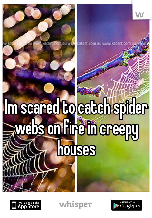 Im scared to catch spider webs on fire in creepy houses