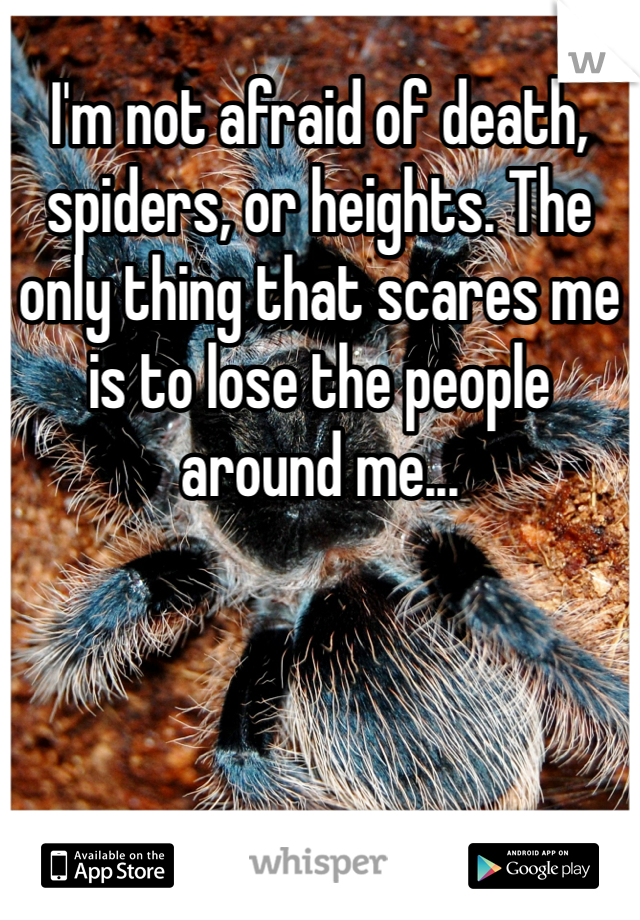 I'm not afraid of death, spiders, or heights. The only thing that scares me is to lose the people around me...