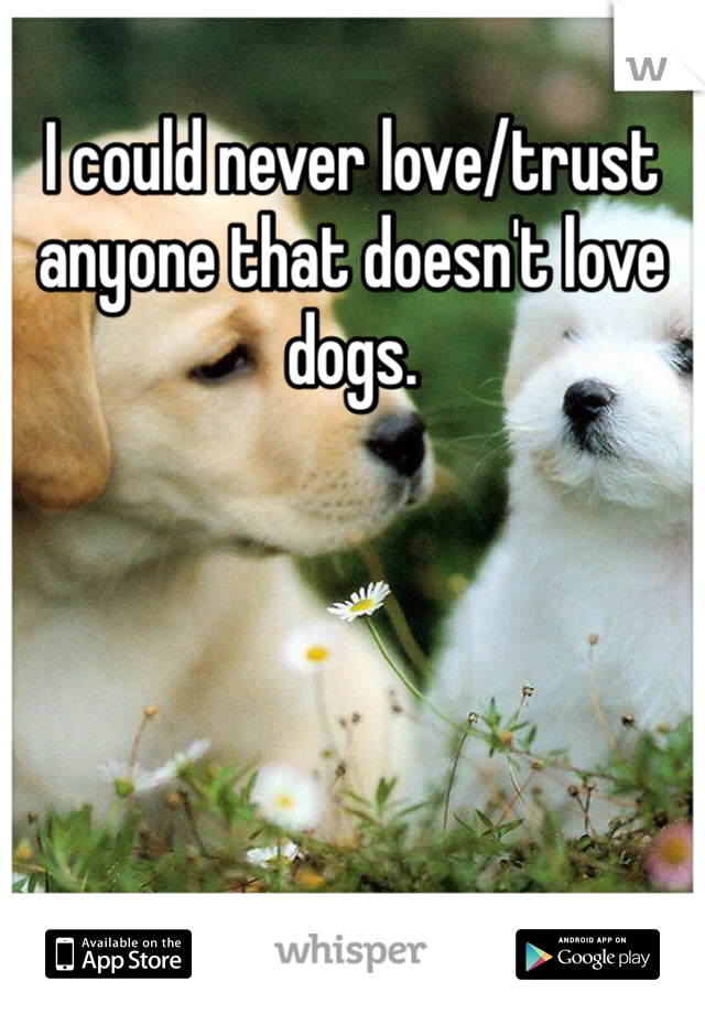 I could never love/trust anyone that doesn't love dogs.