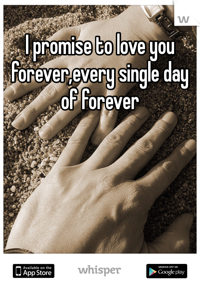 I promise to love you forever,every single day of forever