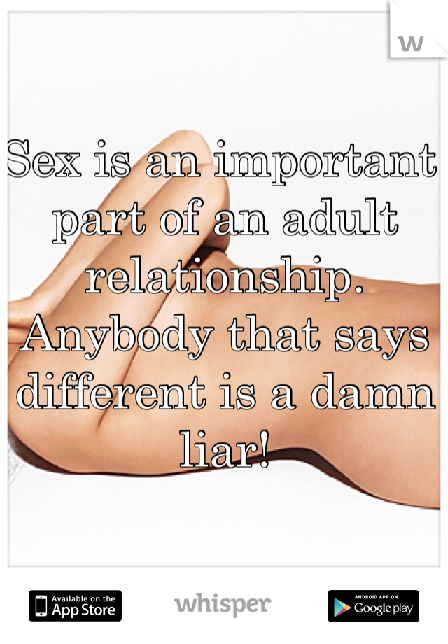 Sex is an important part of an adult relationship. Anybody that says different is a damn liar!