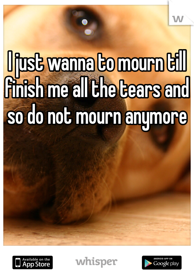 I just wanna to mourn till finish me all the tears and so do not mourn anymore