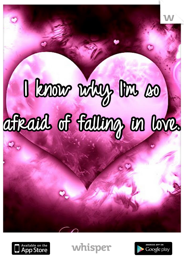 I know why I'm so afraid of falling in love.