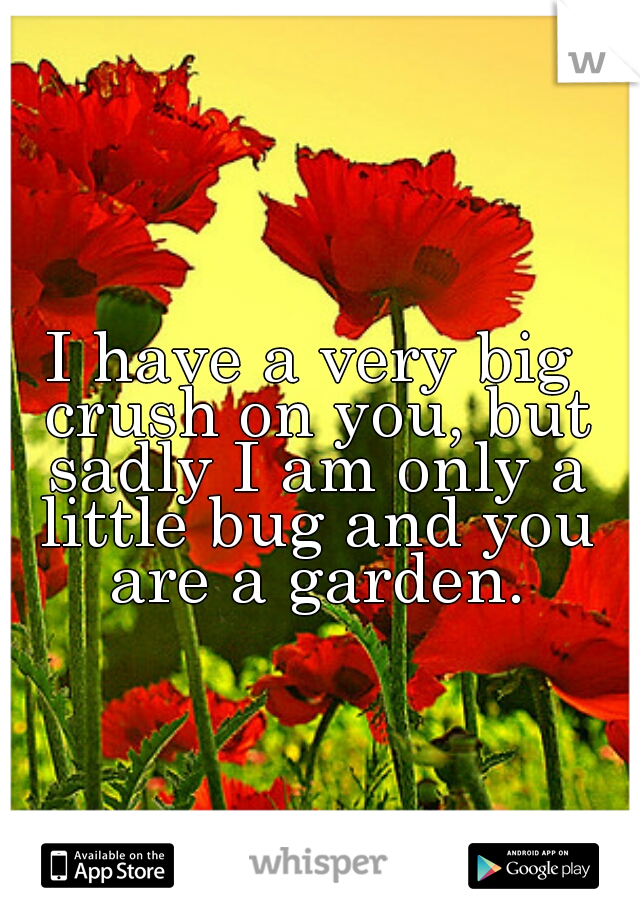 I have a very big crush on you, but sadly I am only a little bug and you are a garden.