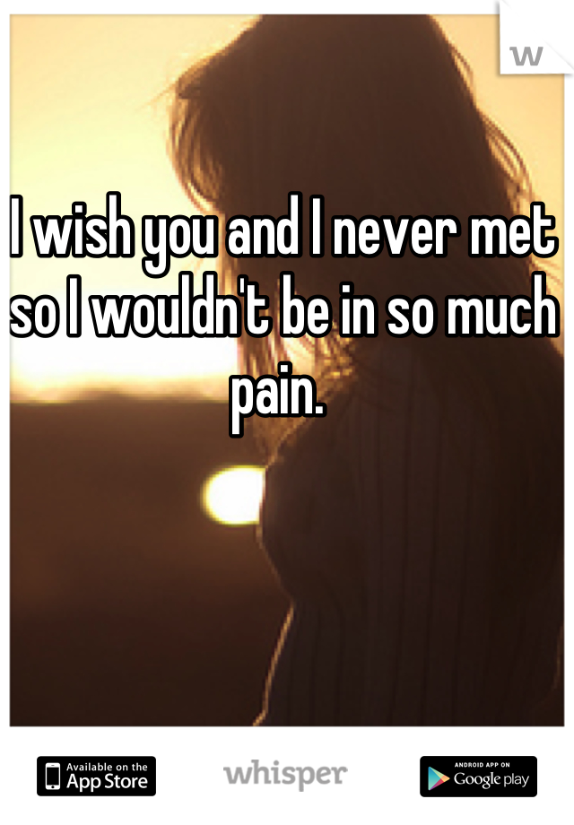 I wish you and I never met so I wouldn't be in so much pain.