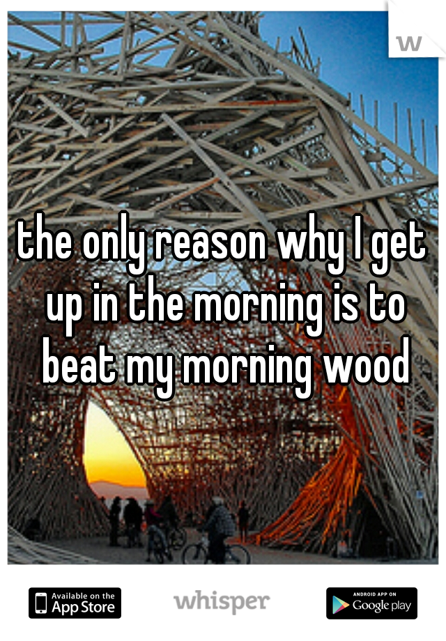 the only reason why I get up in the morning is to beat my morning wood