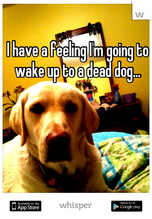 I have a feeling I'm going to wake up to a dead dog...