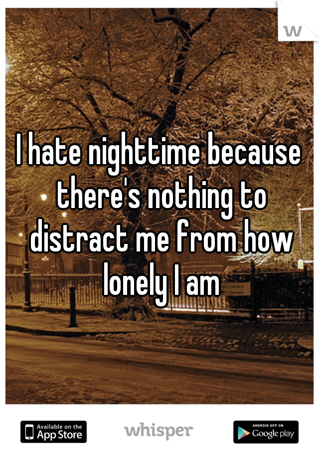 I hate nighttime because there's nothing to distract me from how lonely I am