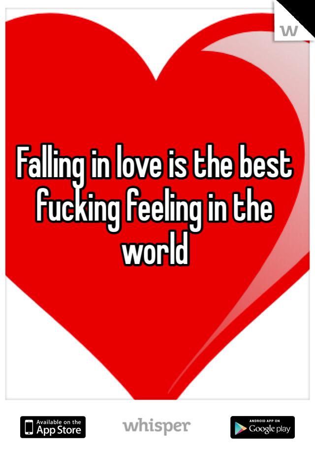Falling in love is the best fucking feeling in the world
