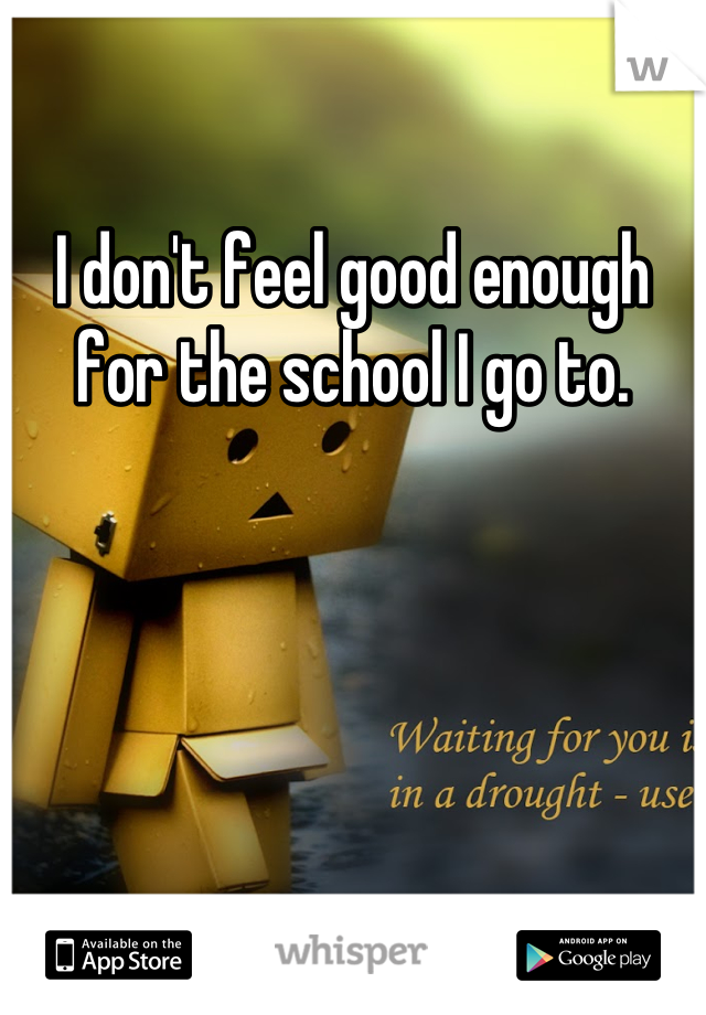 I don't feel good enough for the school I go to.