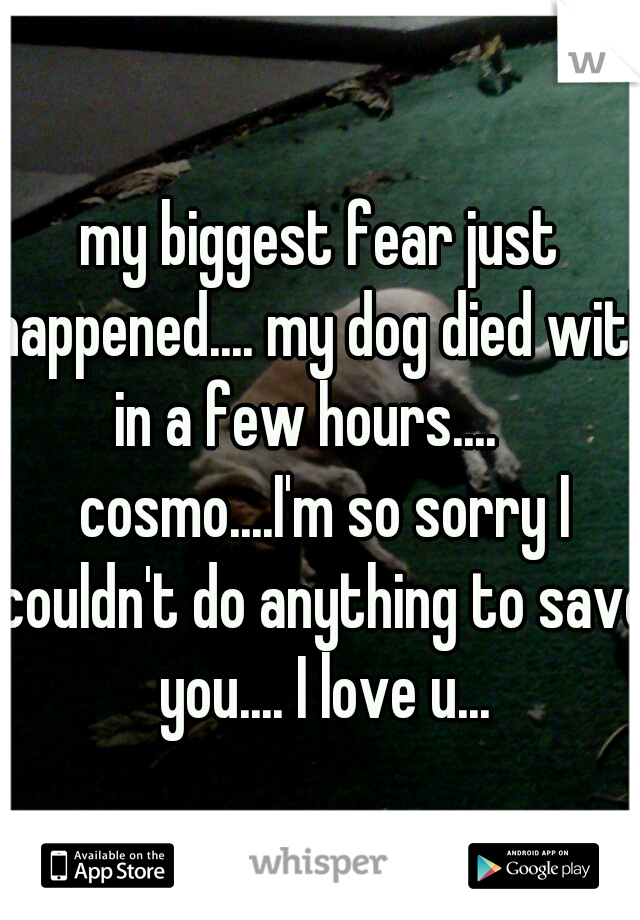 my biggest fear just happened.... my dog died with in a few hours....    cosmo....I'm so sorry I couldn't do anything to save you.... I love u...
