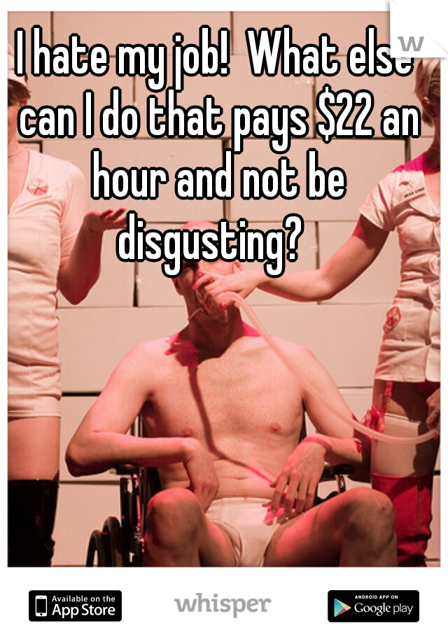 I hate my job!  What else can I do that pays $22 an hour and not be disgusting?