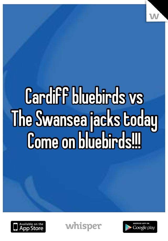 Cardiff bluebirds vs The Swansea jacks today Come on bluebirds!!!