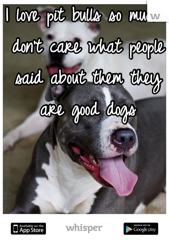 I love pit bulls so much I don't care what people said about them they are good dogs