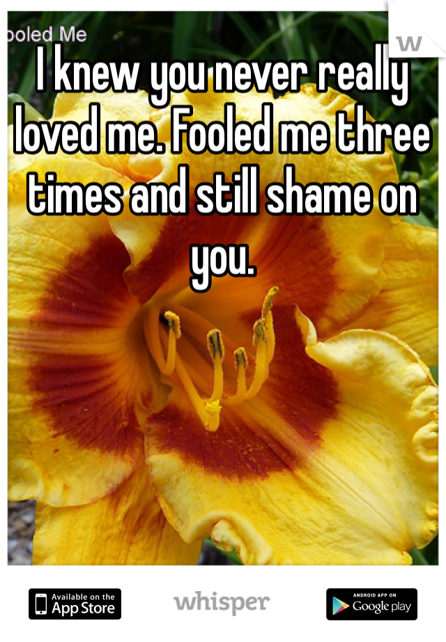 I knew you never really loved me. Fooled me three times and still shame on you.