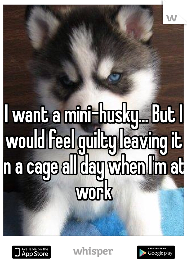 I want a mini-husky... But I would feel guilty leaving it in a cage all day when I'm at work