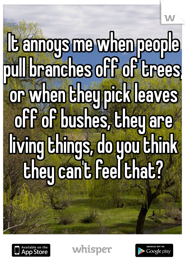 It annoys me when people pull branches off of trees, or when they pick leaves off of bushes, they are living things, do you think they can't feel that?