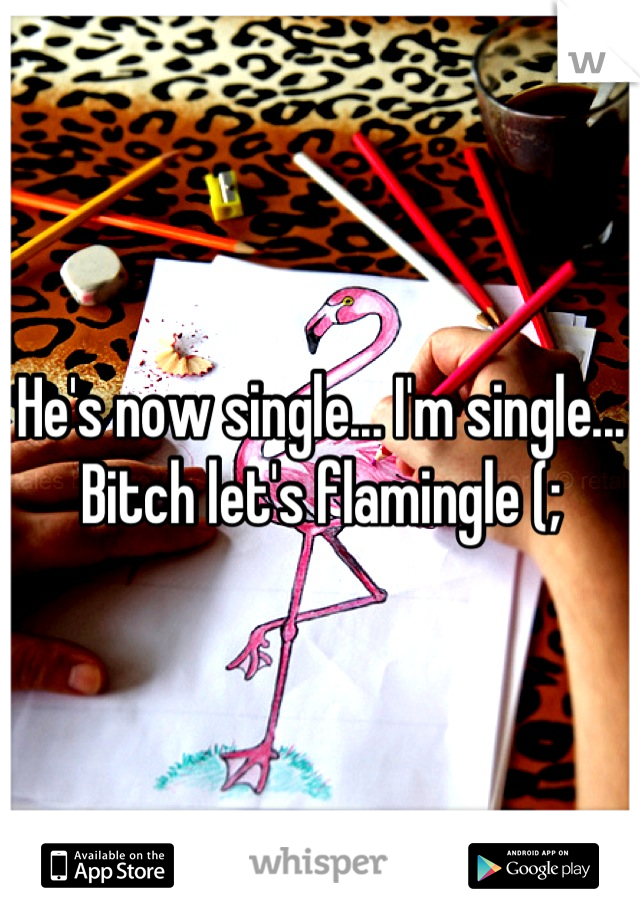 He's now single... I'm single... Bitch let's flamingle (;