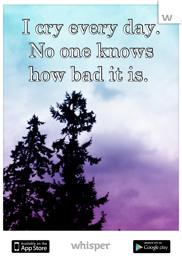 I cry every day.  No one knows  how bad it is.