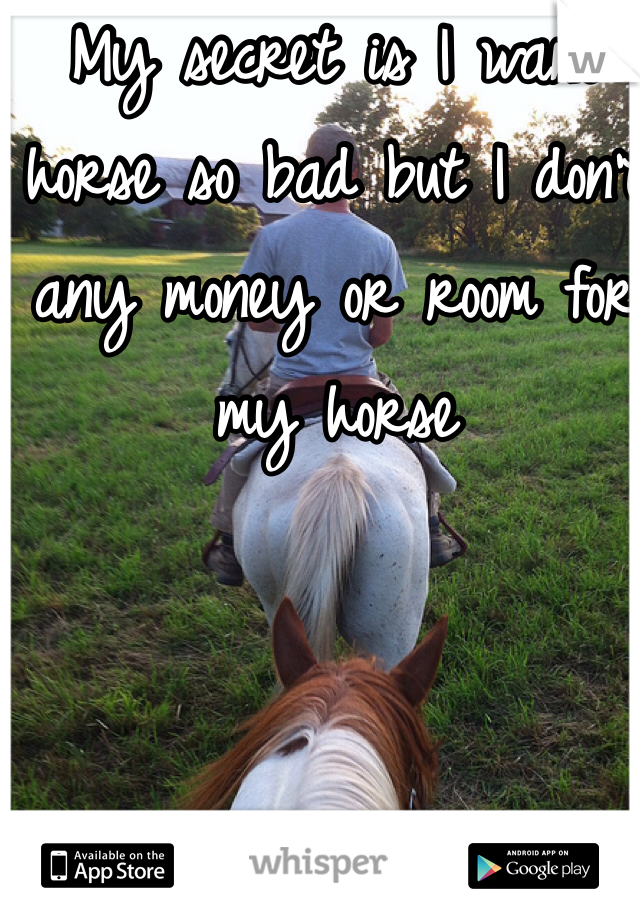 My secret is I want horse so bad but I don't any money or room for my horse