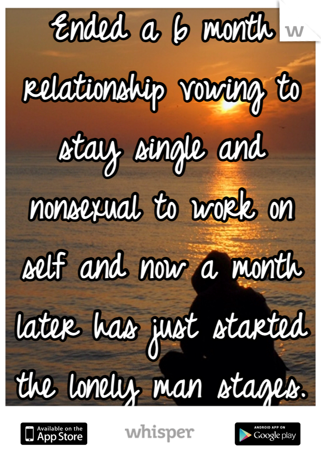 Ended a 6 month relationship vowing to stay single and nonsexual to work on self and now a month later has just started the lonely man stages.