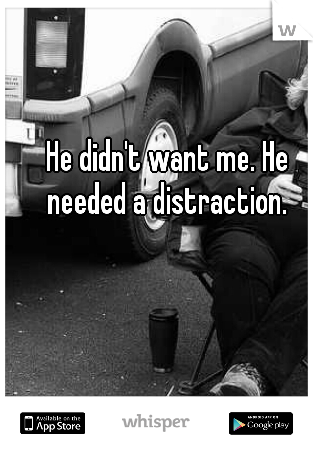 He didn't want me. He needed a distraction.