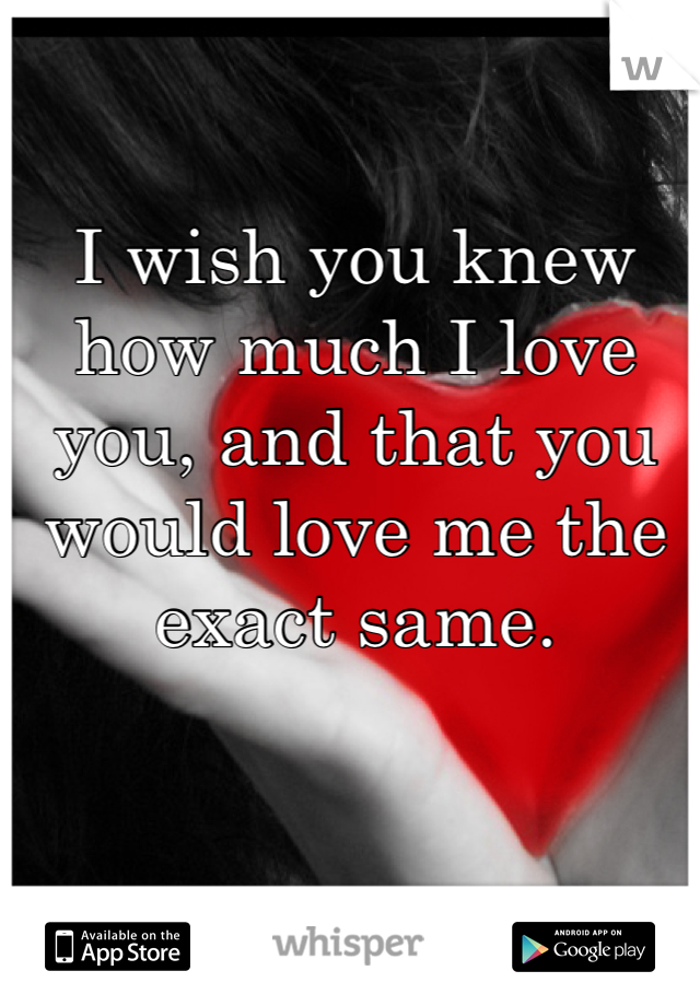 I wish you knew how much I love you, and that you would love me the exact same.