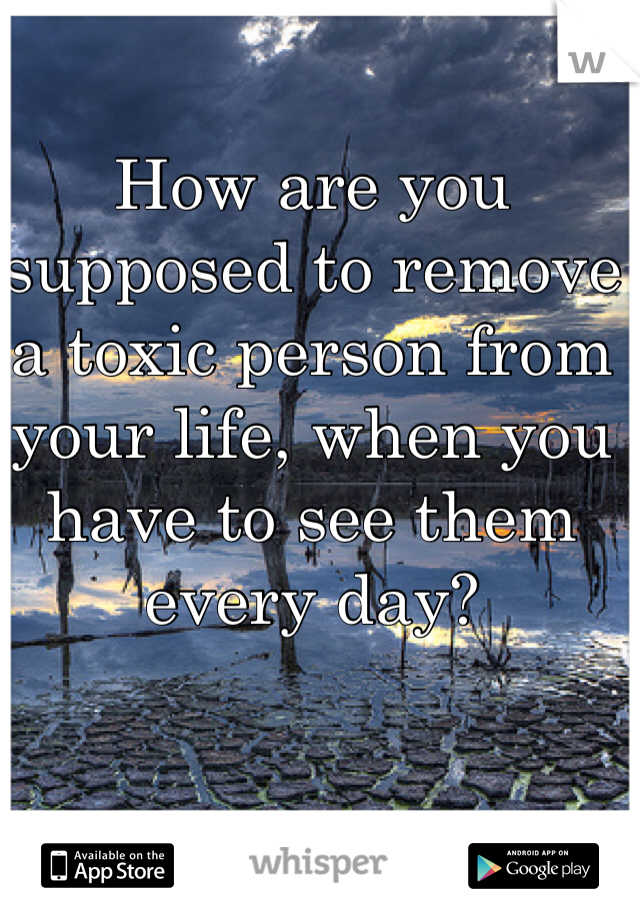 How are you supposed to remove a toxic person from your life, when you have to see them every day?