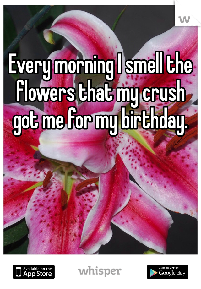 Every morning I smell the flowers that my crush got me for my birthday.