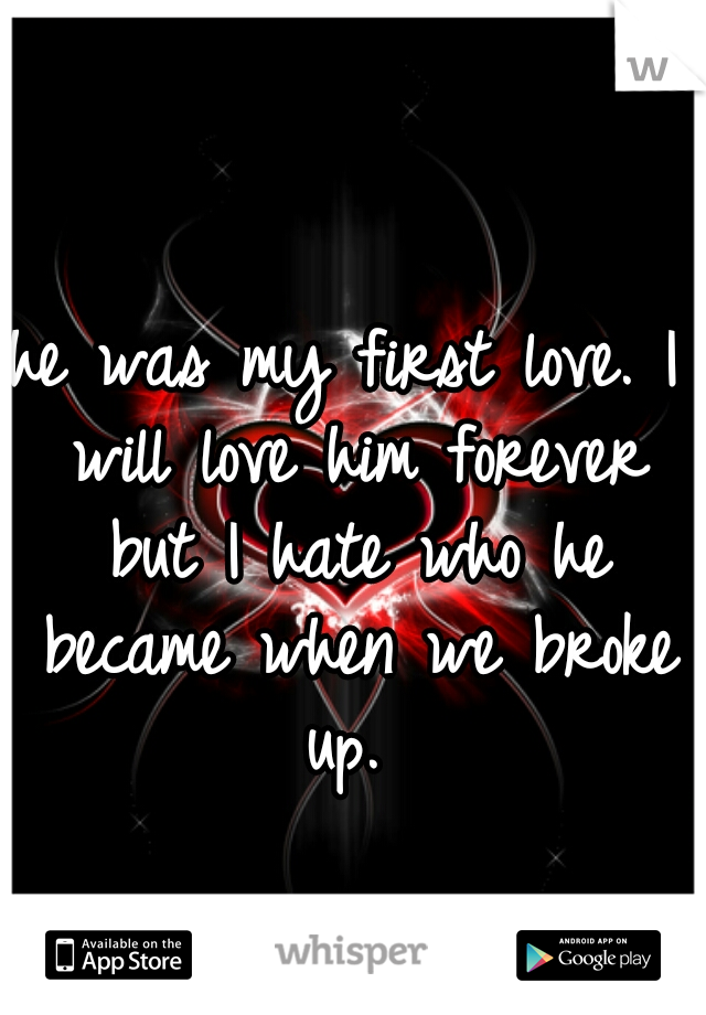 he was my first love. I will love him forever but I hate who he became when we broke up.