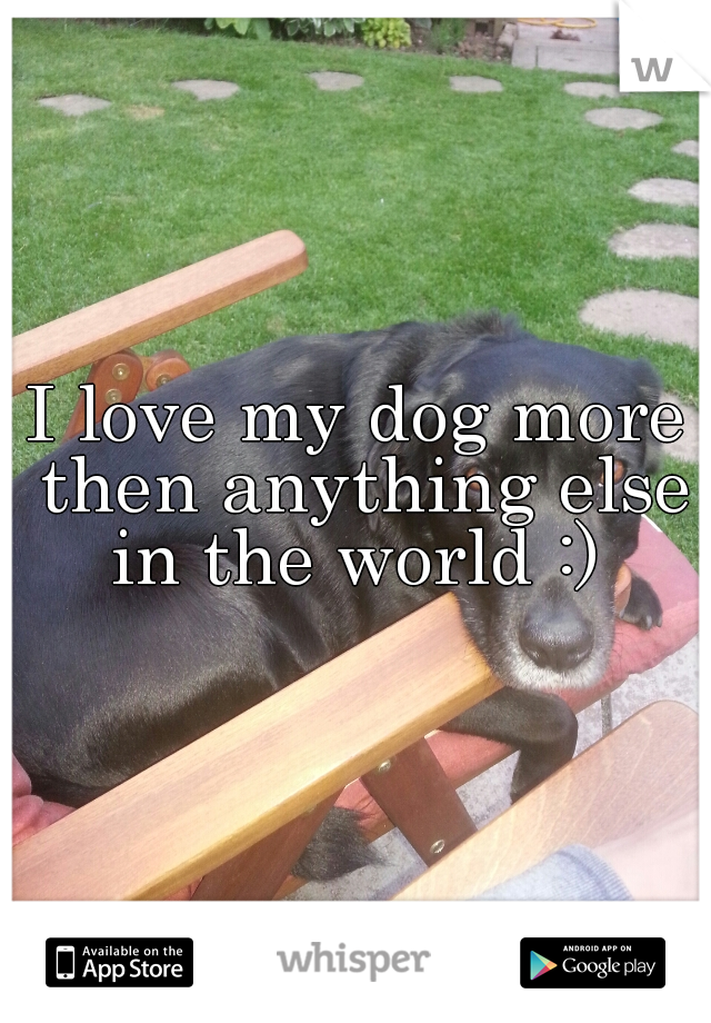 I love my dog more then anything else in the world :)