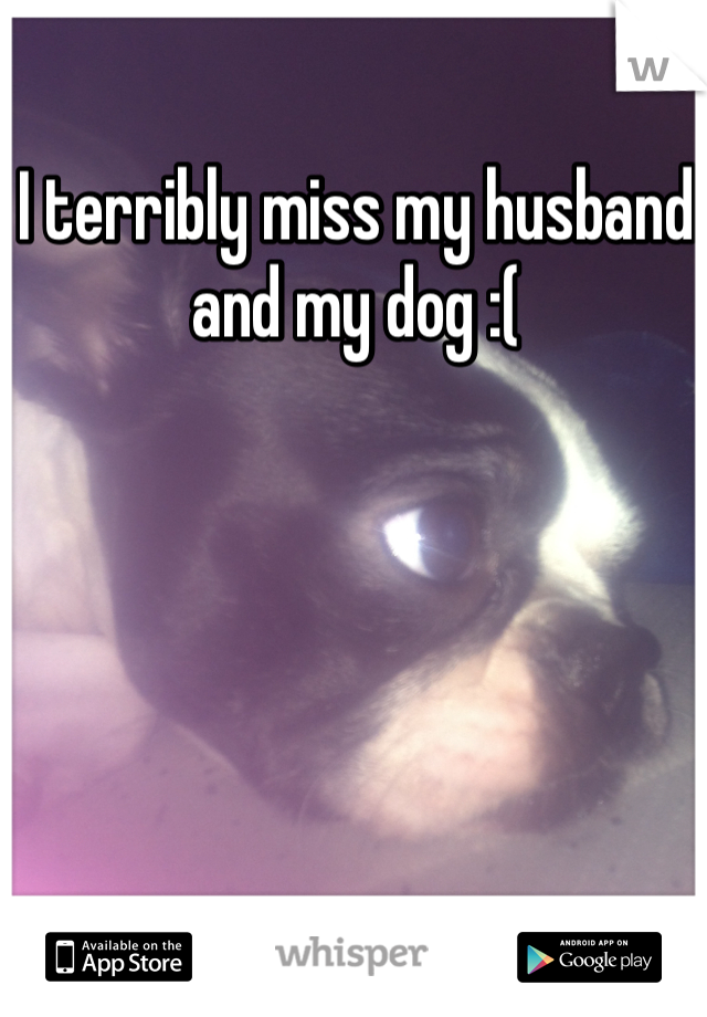 I terribly miss my husband and my dog :(