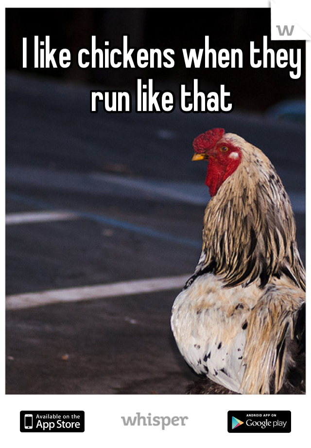I like chickens when they run like that