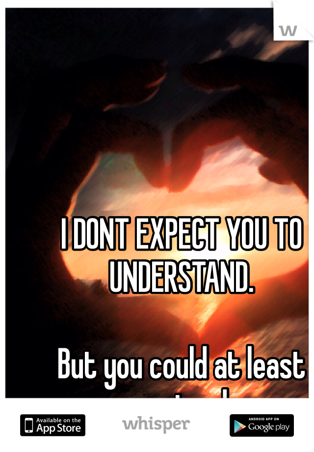 I DONT EXPECT YOU TO UNDERSTAND.   But you could at least pretend