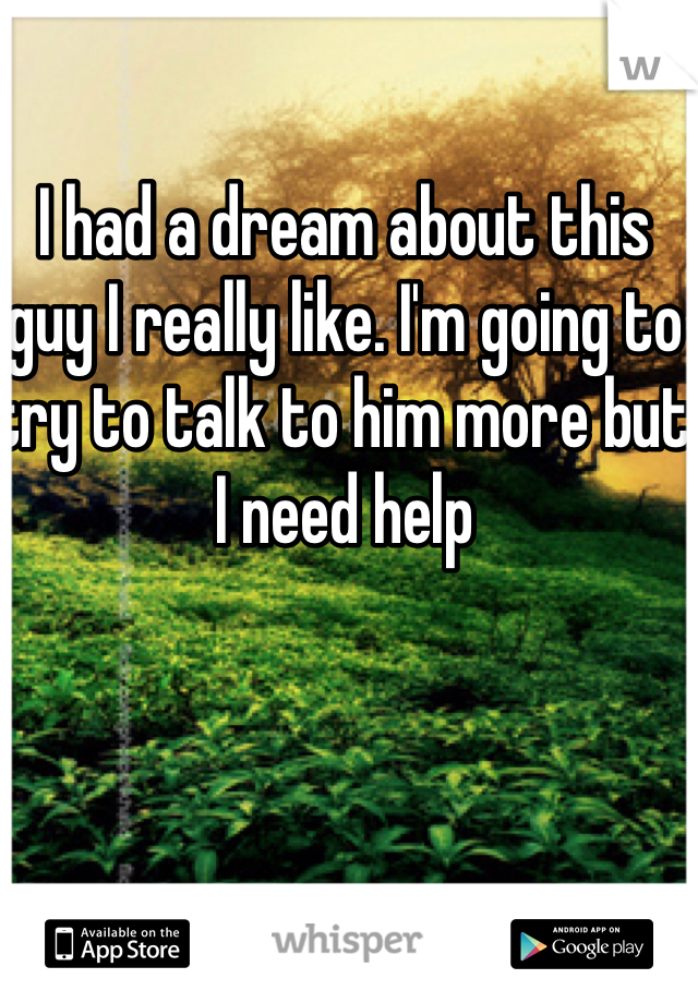 I had a dream about this guy I really like. I'm going to try to talk to him more but I need help