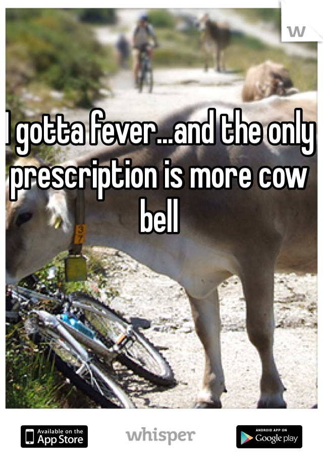 I gotta fever...and the only prescription is more cow bell