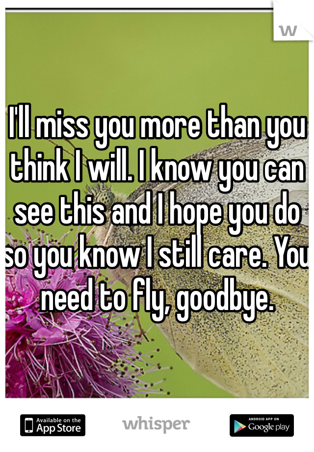 I'll miss you more than you think I will. I know you can see this and I hope you do so you know I still care. You need to fly, goodbye.