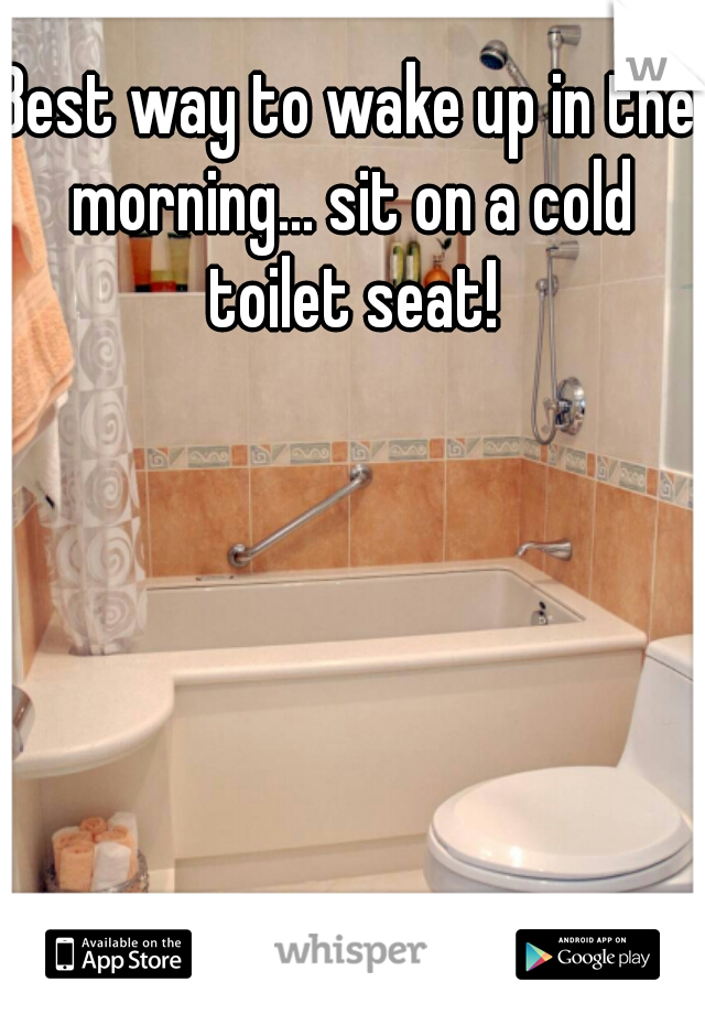 Best way to wake up in the morning... sit on a cold toilet seat!