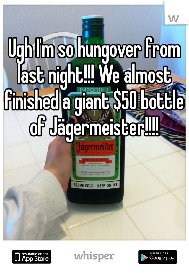 Ugh I'm so hungover from last night!!! We almost finished a giant $50 bottle of Jägermeister!!!!