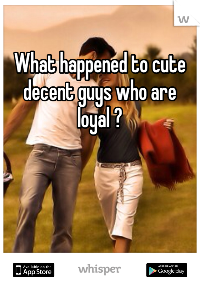 What happened to cute decent guys who are loyal ?