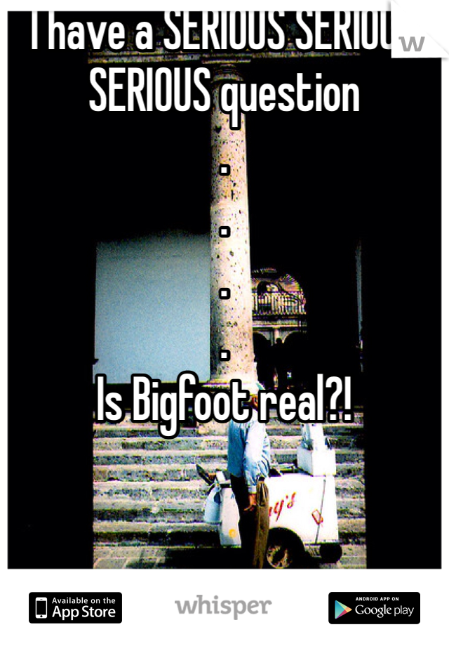 I have a SERIOUS SERIOUS SERIOUS question . . . . Is Bigfoot real?!